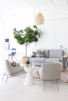 gray sofa + wicker p
