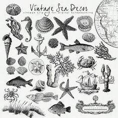 nautical flags alphabet - Αναζήτηση Google