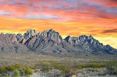 The Organ Mountains are named after their needle-like extrusions of granite that resemble organ pipes.