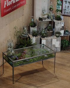 Terrarium Table at the Garden Museum Exhibition | Flickr - Photo Sharing!