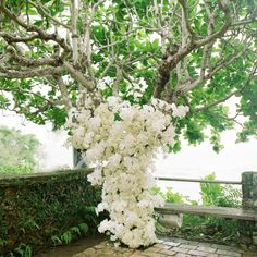Orchid covered ceremony decor // Elizabeth Messina Photography // Tai Floral // http://www.theknot.com/weddings/album/a-romantic-destination-wedding-in-golden-eye-oracabessa-bay-jamaica-131200