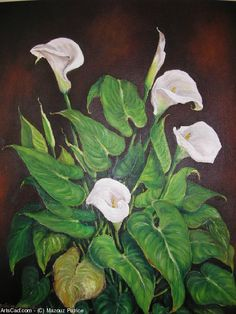 Artwork >> Mazouz Patrice >> Ara oil / canvas (private var al St Raphael) #artwork, #lilies, #flowers  #oil, #painting, #masterpiece, #nature