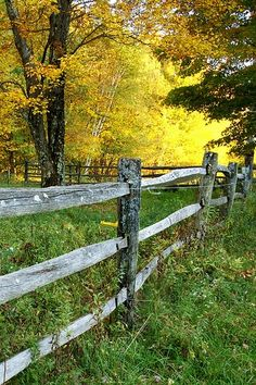 Based on your tastes, your fence could be constructed with a modern flair or inside a more country style. Before applying any stain, make sure the fence is clean and totally dry. Country Fences, Rustic Fence, Country Farm, Country Life, Country Living, Country Roads, Rustic Wood, Fotografia Macro, Old Fences