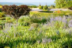 Le Pavillon de Galon,  Cucuron, Provence