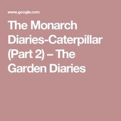 The Monarch Diaries-Caterpillar (Part 2) – The Garden Diaries