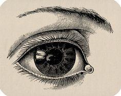human eye transfer