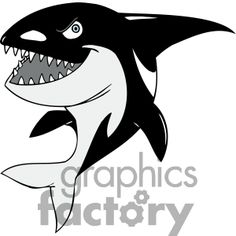 cartoon whale killer orca clip clipart vector animals water funny whales fish tattoo graphicsfactory cartoons royalty svg orcas airport security