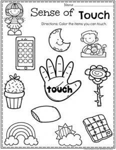 Preschool Preschool 5 Senses Worksheet - Sense of Touch Five Senses Kindergarten, Five Senses Preschool, 5 Senses Activities, My Five Senses, Kindergarten Science, Preschool Learning Activities, Preschool Lessons, Kindergarten Worksheets, Worksheets For Kids
