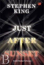 Just After Sunset––sebut saja senja, atau petang, adalah waktu ketika hubungan antar manusia mengambil bentuk yang tidak wajar, ketika segalanya tidak seperti yang terlihat, ketika imajinasi mulai meraih bayang-bayang yang menghilang menjadi kegelapan, dan siang hari yang terang bisa terusir pergi dari dirimu. Ini waktu yang sempurna bagi Stephen King.