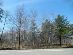Nicely #wooded almost 2 acres, this #vacantlot  is perfect for your #dreamhome with #views of #PineMountain    $34,900   TBD Pine Mountain Rd., #IronMountainMichigan   MLS # 1100947