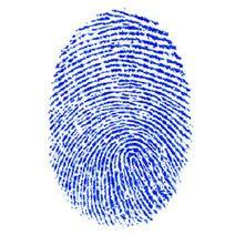 EU-Hof torpedeert Nederlandse wet vingerafdrukken 3privacy #bigdata