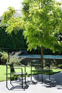 Pool Landscape Design, Landscape Architecture, Garden Design, Garden Fencing, Garden Pool, Gardening For Beginners, Gardening Tips, Steel Fence, Australian Architecture