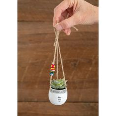 This Natural Life Mini Hanging Faux Succulents features A life-like succulent in an adorable heart shape pot with twine hanger Shop Now! Cactus House Plants, Mini Plants, Little Plants, Indoor Plants, Cactus Decor, Cactus Art, Hanging Succulents, Faux Succulents, Hanging Plants