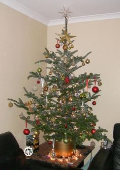 Our decorated Quirky tree