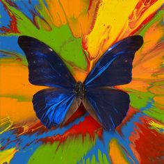 damian hirst - free  like this. maybe inspiration for color wheel/mixing paint.