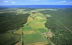 Manitoulin Island Farmland, Near Spring Bay. Canada Pictures, Manitoulin Island, Water Island, Largest Countries, Beautiful Islands, Fresh Water, Ontario, Culture, River