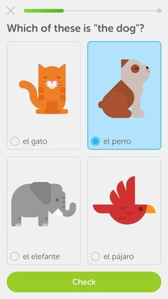 As an EAL tool or a Modern Foreign Language tool, Duolingo is such an incredible resource to have in the classroom. It can be used to help children learn a variety of languages and is designed to t…