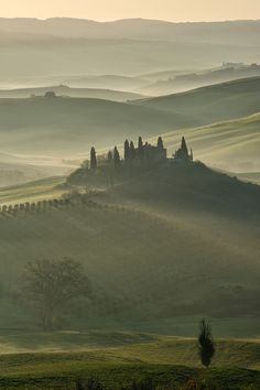 Podere Belvedere  San Quirico d'Orcia - Tuscany