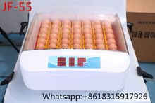 JF- 55 , new arrival JF-55 Mini egg incubator for sale hot sale factory suply