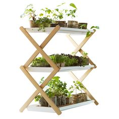 Kekkilä Plant shelf (€159) ❤ liked on Polyvore featuring home, home decor, plants, fillers, decor, flowers, white tray, painted tray and white home decor