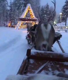 Video: Holly Jolly Christmas via Christmas Tree Gif, Christmas Scenery, Christmas Feeling, Winter Scenery, Cozy Christmas, Christmas Music, Beautiful Christmas, Christmas Time, Christmas Decorations