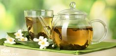 Can you drink herbal tea with CKD? If you are fed up with the conventional western medicine, herbal tea will be a good choice for you. But not all herbal tea is suitable. Now go on reading to learn more information. Herbal tea for CKD patie Detox Tee, Best Tea Brands, Best Fat Burning Foods, Mulberry Leaf, Green Tea Recipes, Green Tea Benefits, How To Make Tea, Foods To Eat, Low Carb Diet