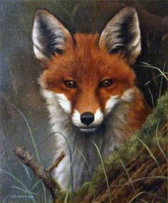 : Fox On The Prowl. Painting by English Wildlife artist Carl Whitfield British Wildlife, Wildlife Art, Wildlife Paintings, Animals And Pets, Cute Animals, Fox Painting, Fox Pictures, Fox Drawing, European Paintings