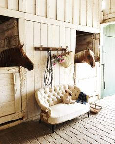 """Dreamy Whites Lifestyle (@dreamywhiteslifestyle) on Instagram: """"Trying to get three animals to cooperate is always a challenge. Vintage French bridle racks will…"""""""