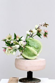 I unnerved my family by coming home from the supermarket this morning with two cabbages and a cauliflower. Flower Centerpieces, Flower Vases, Flower Decorations, Ikebana Arrangements, Modern Flower Arrangements, Table Arrangements, Flower Cart, Flower Food, Fruit Photography