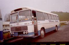 Buses, New Zealand, Transportation, Vehicles, Car, Vehicle