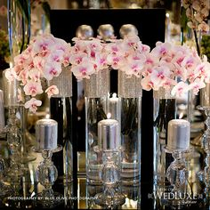 Love this orchids