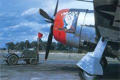 """P-47 """" SHACK RAT """""""