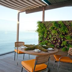 Love the living wall... and the amazing view.