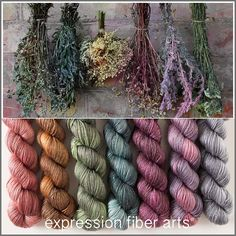 Dried Herb Hues - luster merino tencel sport mini skein kit by expression fiber arts