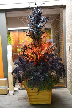fall container planting