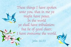 John 16:33 King James Version (KJV) | 33 These things I have spoken unto you, that in me ye might have peace. In the world ye shall have tribulation: but be of good cheer; I have overcome the world.