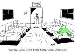 Coma Coma Coma Coma Coma Chameleon
