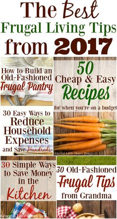 The Best Frugal Living Tips from 2017 - Graceful Little Honey Bee Living On A Budget, Frugal Living Tips, Frugal Tips, Frugal Meals, Frugal Recipes, Budget Meals, Ways To Save Money, Money Tips, Money Saving Tips