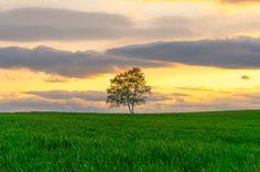 Sunset by Hiroteru Hirayama on 500px