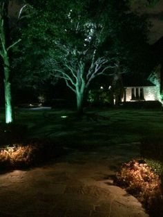 Moonlighting technique installed by dallas landscape lighting at a moonlighting technique installed by dallas landscape lighting at a horse ranch in rockwall tx moonlighting is the effect achieved when down li mozeypictures Images