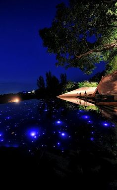 paresa resort, phuket, thailand...fiber optics in the pool!!