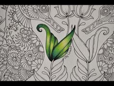 3 Ways to Colour Leaves in Magical Jungle - YouTube