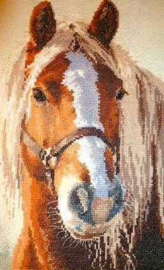 Cross Stitch Horse, Cross Stitch Art, Cross Stitching, Cross Stitch Patterns, Fabric Patterns, Beading Patterns, Autumn Trees, Needlepoint, Horses