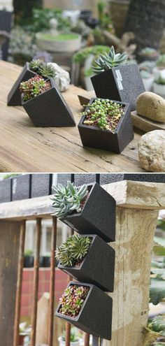 This cool black concrete hanging planter comes with a succulent or cactus. It can be put on the wall or placed on the desk or window sill. It looks amazing when there are more than two together. #ad #concrete #black #hangingplanter #planter #flowerpot #homedecor #succulent #cactus