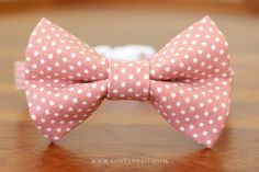 Hey, I found this really awesome Etsy listing at https://www.etsy.com/listing/291050979/lovely-dots-cat-bow-tie-collar-rose-pink