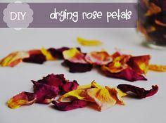 DIY: Drying Rose Petals...tis the season