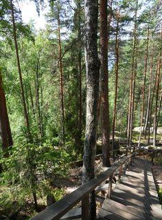 Repovesi National Park (Kouvola) Helsinki, Finland, Need To Know, Trip Advisor, National Parks, Photos, Pictures