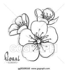 Vector Illustration - Sakura flowers on a white background. Flower Art Drawing, Flower Drawing Tutorials, Flower Sketches, Floral Drawing, Art Drawings Sketches, Tattoo Drawings, Tattoos, Cherry Blossom Art, Cherry Blossom Vector