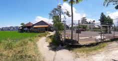 The owner must be damn rich a property with a rice field view 1 minute walking distance to canggu club in the middle of lavish Canggu area only sell small groceries like cigarettes and drinks