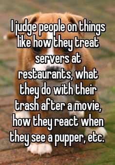 """""""I judge people on things like how they treat servers at restaurants, what they do with their trash after a movie, how they react when they see a pupper, etc. """""""